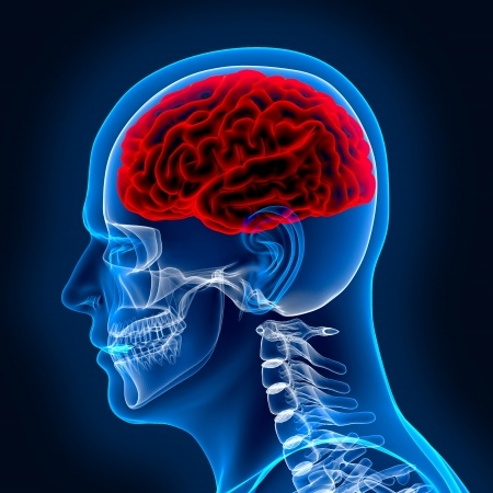 4 Life-changing effects of TBI - Spivey Law Firm, Personal Injury Attorneys, P.A.